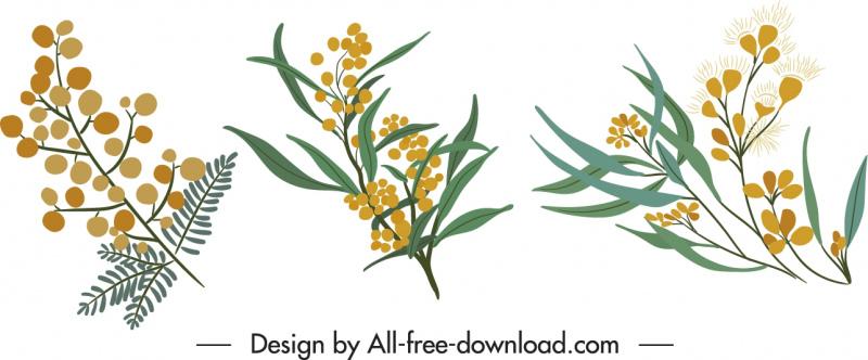 decorative flower icons classical elegant handdrawn design