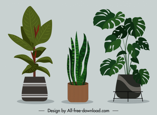 decorative houseplant background colored flat classic sketch