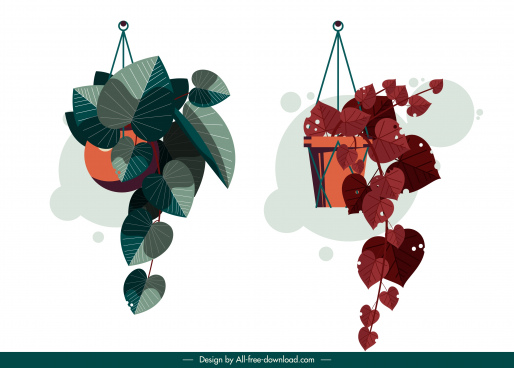 decorative houseplant icons hanging design colored classic