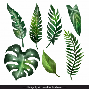 decorative leaf icons green classic handdrawn outline