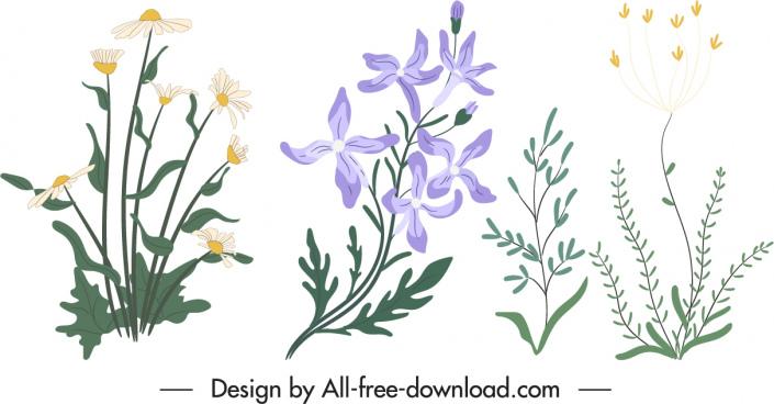 decorative nature elements classical handdrawn floras trees