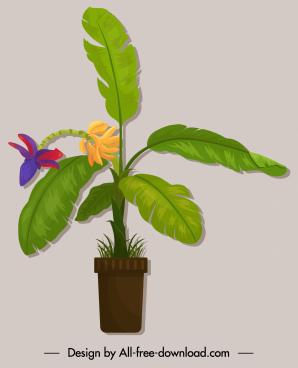 decorative plant icon banana sketch colored classic design