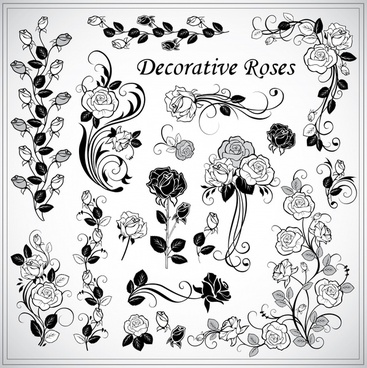 decorative roses elements elegant black white classic handdrawn