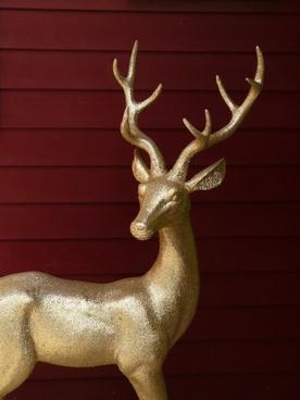 deer antlers golden