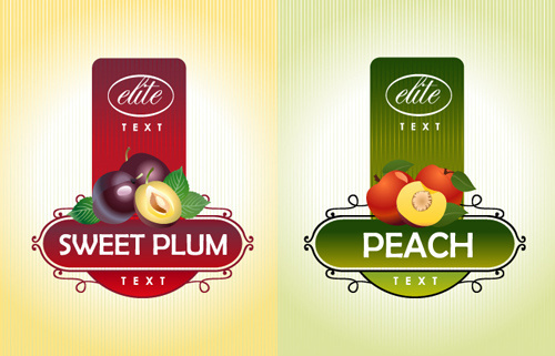 delicate fruit advertising labels vector