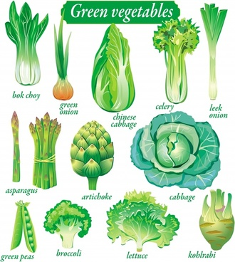 organic vegetables icons fresh green sketch