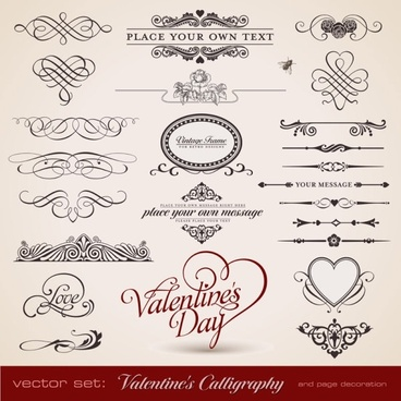 delicate lace pattern elements vector