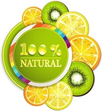 delicious fruit slices 01 vector