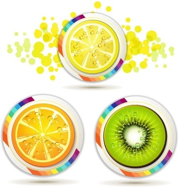 delicious fruit slices 04 vector
