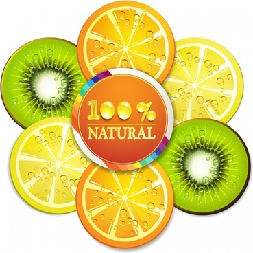 delicious orange slice kiwi fruit slices vector