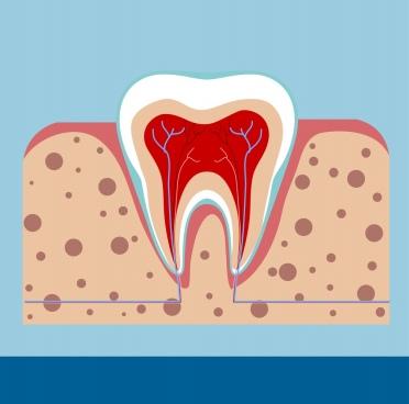 dental background tooth gum icon flat cutting design