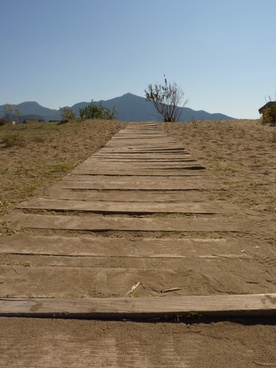 desert away trail