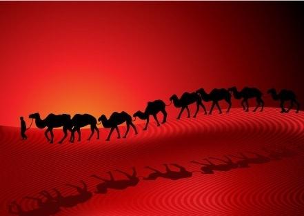 desert camel silhouette vector