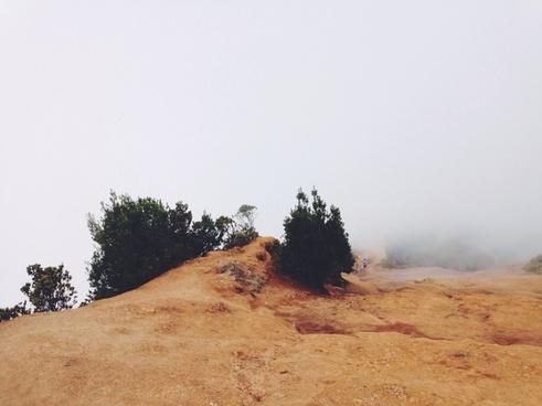 desert dry forest geology grass hiking hill