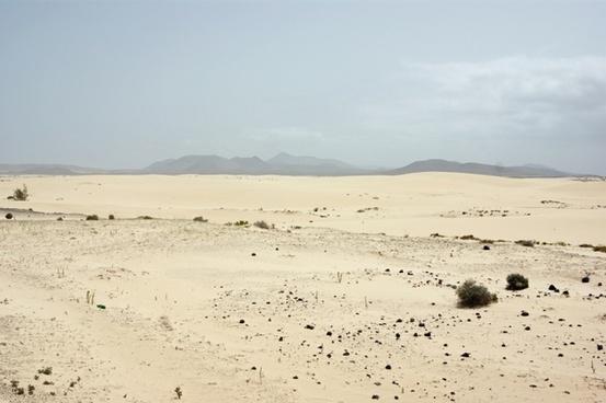desert loneliness arid