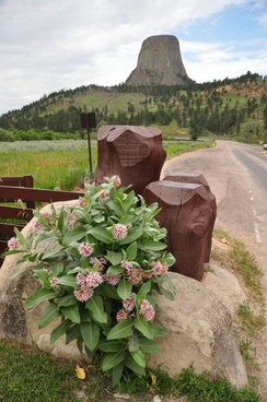devils tower mountain mountains