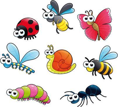 different cartoon insect vector
