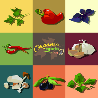different food objects vector