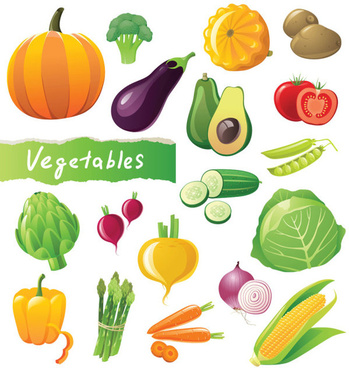 different fresh vegetables vector graphics