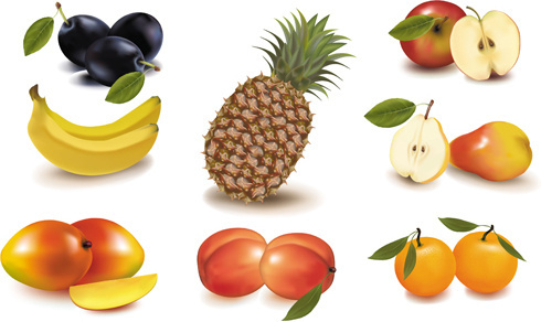 different fruit elements vector set