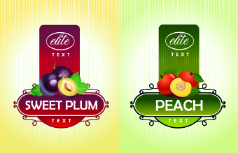 different fruit stickers vector set