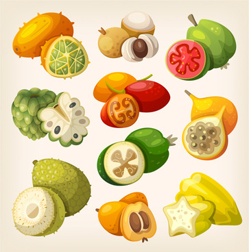 different fruits design vectors set