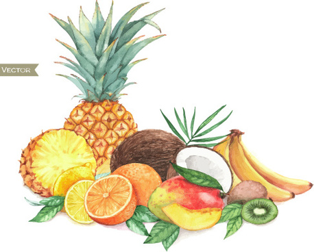 different fruits watercolor vectors design
