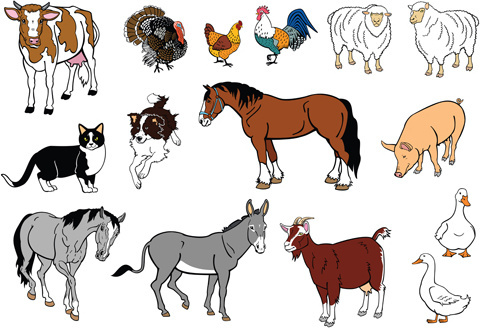 different house animals vector set