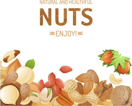 different nuts vector background graphics