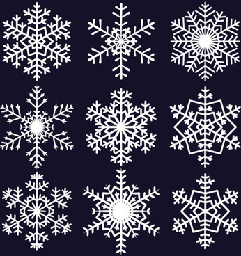 different snowflake pattern mix vector graphics