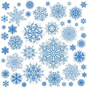 different snowflake patterns design elements vector