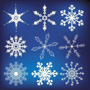 different snowflakes mix design vector