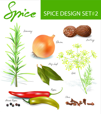 different spices design set vector
