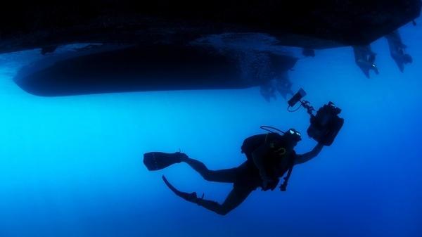 diver diving swimming