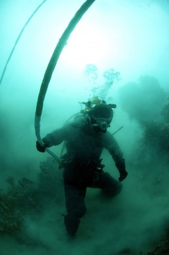 diver diving underwater