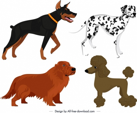 dog species icons colored cartoon design