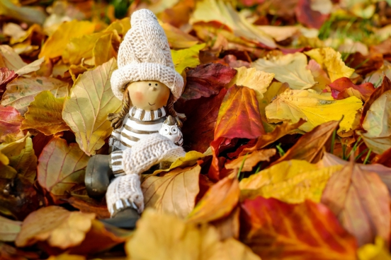 cute girl doll on yellow dried leaves