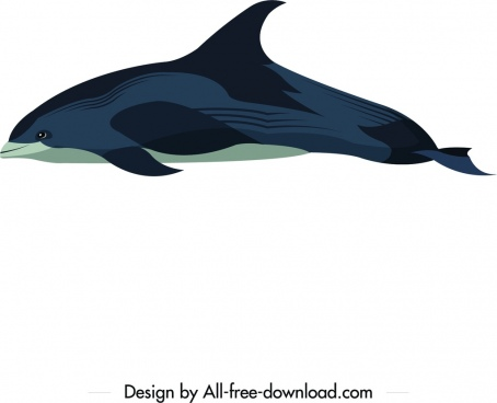 dolphin animal icon colored cartoon sketch