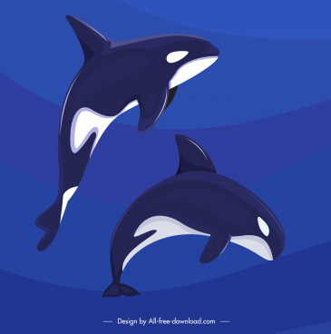 dolphin background motion sketch dark blue design