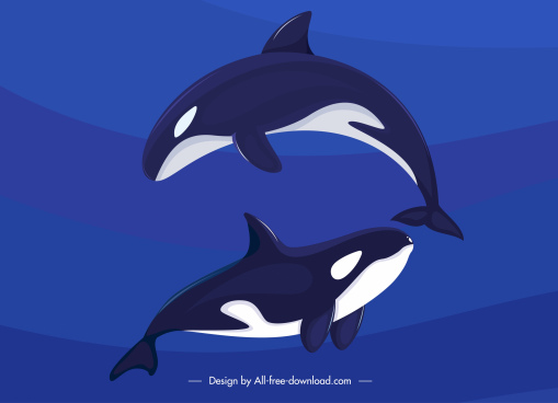 dolphins background two swimming sketch dark colored design