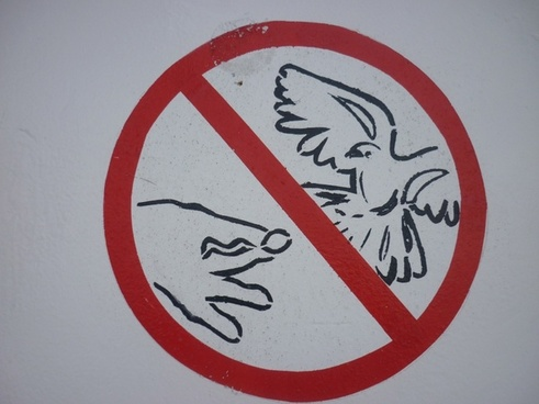 don039t feed the birds