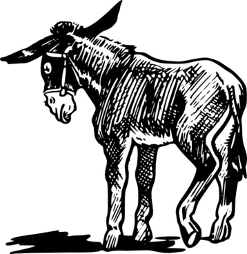 Donkey Outline In Black And White clip art