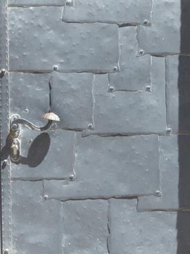 door metal protection