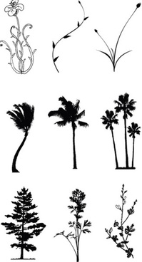 drawing tree and flower vector