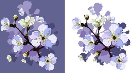 drawn peach blossom creative vector