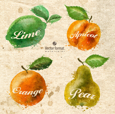 drawn watercolor fruits vector design set
