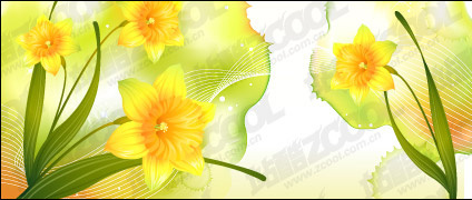 Dreams and Narcissus vector background material