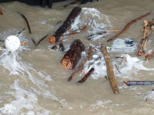 drift wood flotsam and jetsam garbage