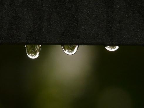 drip raindrop water