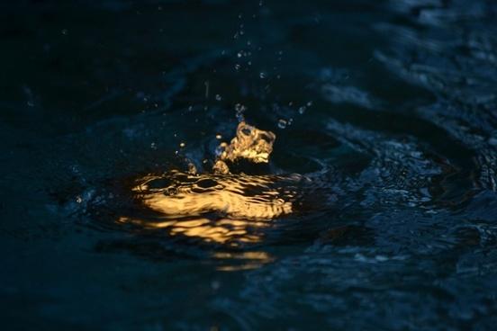 drop water dusk
